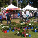 Markets and Gardens 010